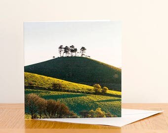 Colmer Tree, Dorset - Greeting Card