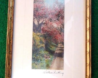 Vintage Wallace Nutting hand tinted photo - Tunnel of Bloom