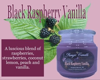 Black Raspberry Vanilla Scented Jar Candle (16 oz.)!