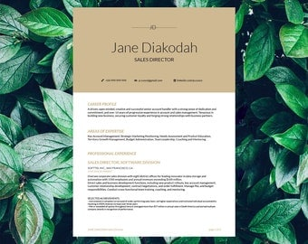 Savage Resume Template Diakodah