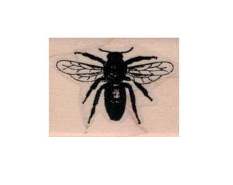 Rubber stamp Bumble bee by Cat Kerr insect stamps  stamping plate  scrapbooking supplies number 20137
