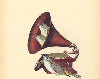 Songbirds.  Original collage by Vivienne Strauss.