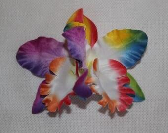 Pair Double Rainbow TROPICAL HAWAIIAN ORCHID Hair Clips