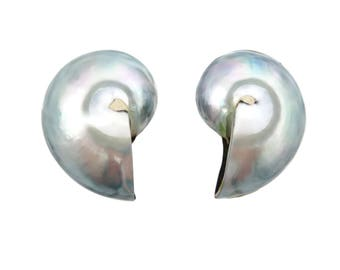 Nautilus Shell Earrings - Seashell Beach Jewelry Pierced Posts