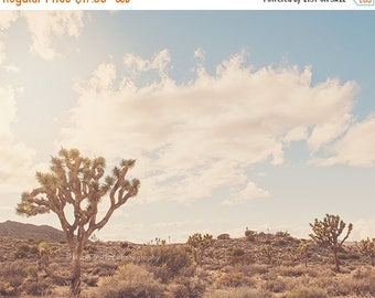 SALE desert, Joshua Tree photograph, boho decor, Palm Springs art, Coachella art, Joshua Tree print,  desert baby wall art, California poste