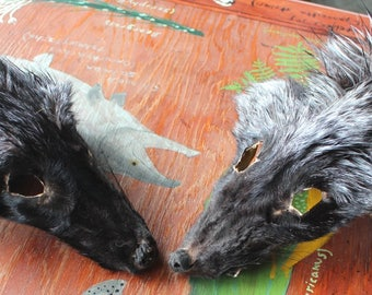 Two CRAFT QUALITY shaped silver fox faces for crafts, taxidermy practice, display, more DESTASH