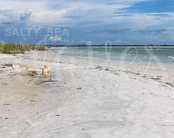 Honeymoon, Sand, Beach, Ocean, Waves, Water, Surf, Nature, Photography, Wall Art,  Nature, Photograph, Wall Art, Decor, Fine Art, Print