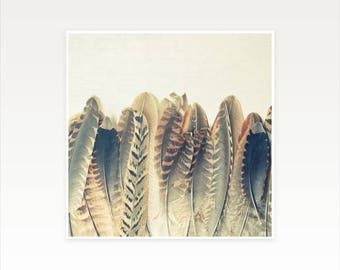 Feather Print, Pheasant Feather Art, Still Life Photography - Feather Dip