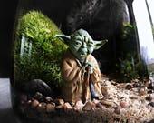 Star Wars Live Terrarium: Choice of Yoda, Ewok, R2D2 or C3PO