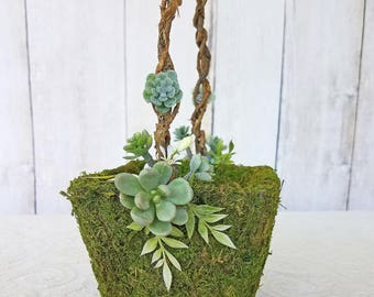 Small Succulent Moss Flower Girl Basket for your Wedding
