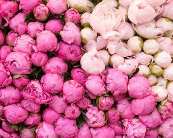 Paris Photography, Summer in Paris, Peony Season, Pink Hues, Market in Paris, Pink Wall Art, French Print, Peony in France, Pink Peonies