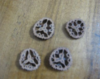 Four Rare Small Black Walnut Slices