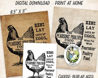 Chicken Feed Sign Vintage Feed Label Vintage Style Digital Download Printable Country Farm Primitive Fabric Transfer Wall Art Image Sheet