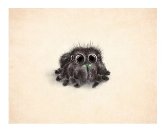 Jumping spider print