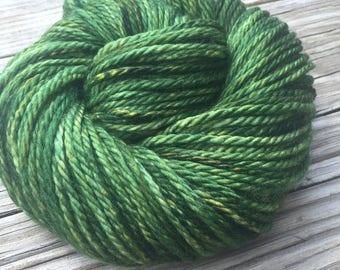 Hand Dyed Bulky Yarn Everglades Excursion yarn 100% superwash merino wool 106 yards forest green yellow bulky weight yarn treasure goddess