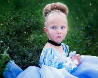 Size 3t Cinderella ballgown