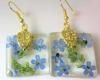 Forget Me Not!  Real Flower Earrings,   Pressed Flower Jewelry, Resin (2071)