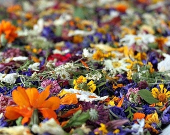 Bulk Confetti, Dried Flowers, Wedding Favors, Tossing Flowers, Biodegradable, Wildflower, Flower Girl, Flower Petals, Craft Supply, 72 Cups