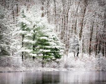 Winter Landscape Print, Winter Print, Winter Photography, Woodland Photo, Winter Photo, Fine Art Photography, Winter Nature Photo