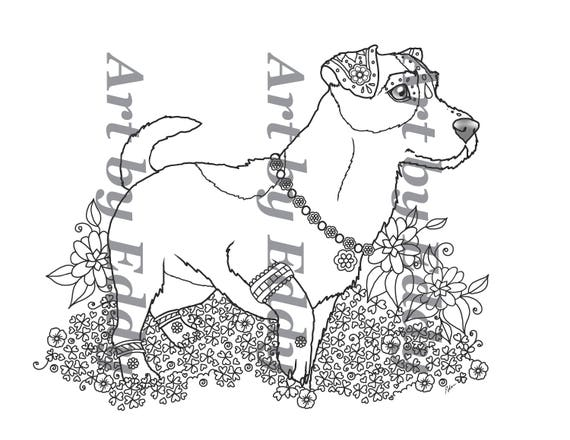 jack russell coloring pages - photo#26