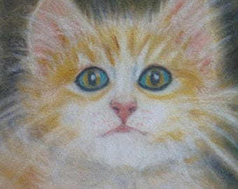 Shabby Chic Cat Lovers an  ORIGINAL PASTEL DRAWING  of a  Sweet Fluffy Tiger Kitty in a Basket  With Beautiful Eyes Framed with Glass