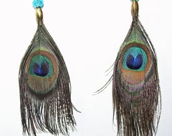 Blue faceted, natural Peacock eye feather earrings