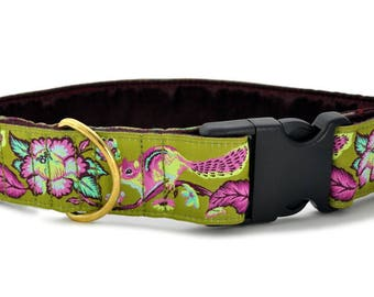 "Ready-to-Ship: Chipmunk Jacquard in Olive - 1.5"" Buckle Collar - EXTRA LARGE - Brass Hardware"