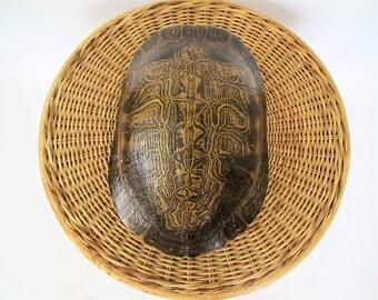 Vintage turtle shell/ curiosity/ nature specimen/ large shell/coastal