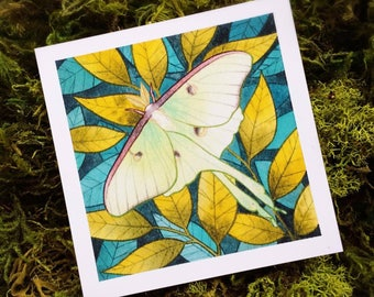 Luna Moth Botanical Watercolor PRINT by Michelle Kent