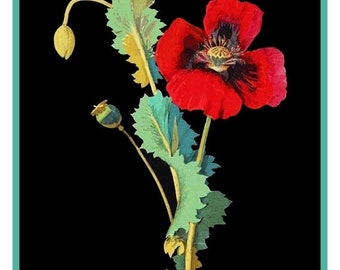 GREAT SALE Mary Delany'sOpium Poppy Flowers  * from Paper Mosaics* Counted Cross Stitch Chart / Pattern