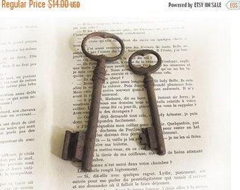 set of 2 Antique big french Skeleton Key, antique patina