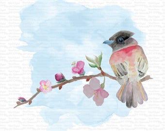 Digital watercolor Hand Painted Watercolor Bird Clip Art High Resolution Graphic Greeting Scrapbooking