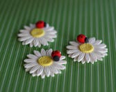 Fondant Daisy with Ladybug Flower Cupcake, Cookie or Mini-Cake Toppers for Birthday, Baby Shower, or Baptism Celebrations