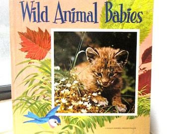 Walt Disney's Wild Animal Babies, by Mary Schuchmann (c. 1965 hardcover book)