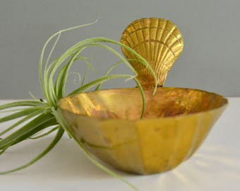 Brass Seashell Bowl - Dish Tray Catch All Coin Holder Coastal Nautical Decor Ocean Sea Shell Bowl Succulent Air Plant Holer