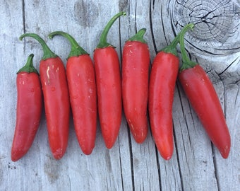 Serrano Heirloom Variety Hot Pepper Excellent Flavor Quality Rare Seeds