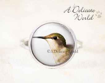 Silver Hummingbird Ring - Female Hummingbird Jewelry, Silver Bird Jewelry, Bird Photo Ring, Humming Bird Ring, Nature Jewelry, Bird Gift