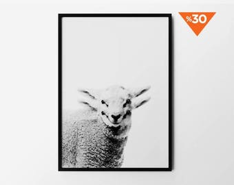Lamb Print, Black and White, Baby Sheep Wall Art, Nursery Wall Decor, Nature Art, Photography, Natural Decor, Minimalist