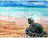"Baby Sea Turtle 4"" x 6"""" Print ""A New Beginning"""