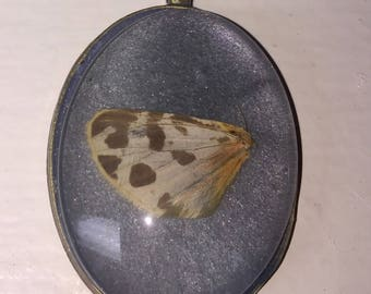 Vintage Butterfly Wing Pendant