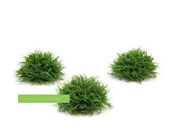 SALE! 3 Inch Half Grass Ball - Topiary Greenery - Large Artificial Greenery Ball - Rustic Wedding Decor - PACK of 3