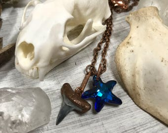 Fossilized Shark Tooth necklace, shark tooth pendant, shark pendant, tooth jewelry, fossil necklace