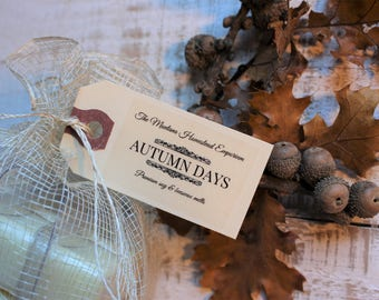 Autumn Days wax tart gift set pure soy and beeswax melters fall candles clamshell tarts wax cubes fall fragrances Montana made candles