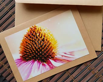 Blank Flower greeting card Photo, macro