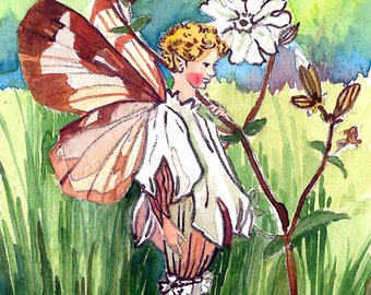 ACEO Limited Edition 1/25- White campion fairy inspired by Cicely Mary Barker, Art print of original watercolor, Wild flowers