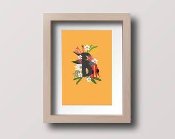Alphabet Letter B AUSTRALIAN FLOWERS illustration printable download Australiana floral