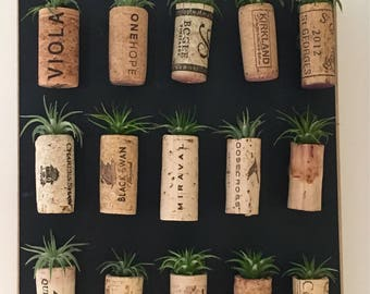 Cork Magnet Air Plants // Air Plants Included // Wine Cork Gift // Shower Favors // Wedding Favors