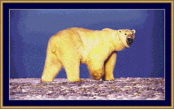 Polar Bear Cross Stitch Pattern /Digital PDF Files /Instant downloadable