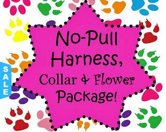 Sale - 40% Off No-Pull Harness, Collar & Flower Set