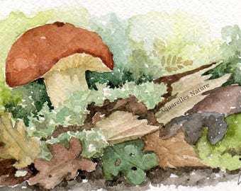 Mushroom and dead wood, 4x6 original watercolor painting, fungi, wild mushrooms, kitchen decor Autum woods, mushroom watercolour, forest